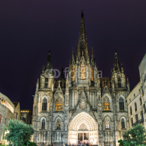Obrazy i plakaty The gothic Barcelona Cathedral at night, Spain