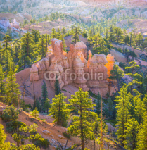Obrazy i plakaty beautiful landscape in Bryce Canyon with magnificent Stone forma