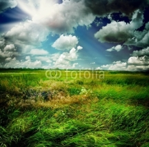Fototapety Beautiful Nature Rural Landscape