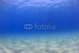 Fototapety Underwater background - sunlight on ocean floor