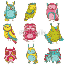 Fototapety Various Owl Doodle Collection - hand drawn - in vector