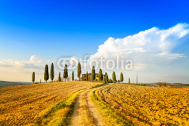 Naklejki Tuscany, farmland, cypress trees and road. Siena, Italy.