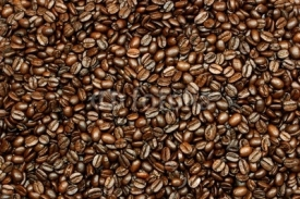 Fototapety fresh coffee beans