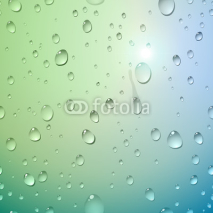 Fototapety Water drops on glass. Vector illustration.