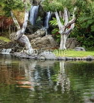 Obrazy i plakaty Waterfall and koi pond in japanese garden