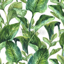 Fototapety Watercolor Seamless Background with Tropical Leaves