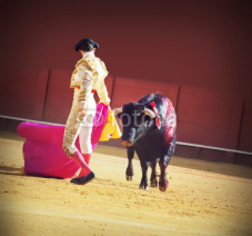 Naklejki Torero with bull in the bullfighting arena in Spain