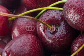 Fototapety Sweet cherry