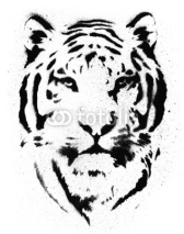 Fototapety Tiger Stencil Vector