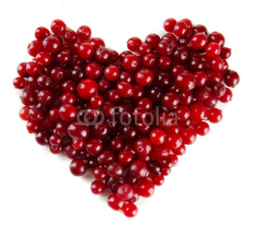Obrazy i plakaty Ripe red cranberries, isolated on white.