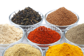 Fototapety Variety of Raw Authentic Indian Spice Powder