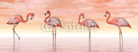 Obrazy i plakaty Pink flamingos in water - 3D render