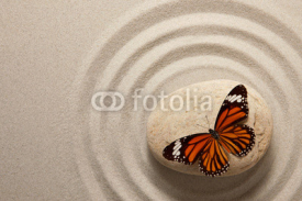 Fototapety Zen rock with butterfly