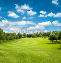 Obrazy i plakaty green golf field and blue cloudy sky