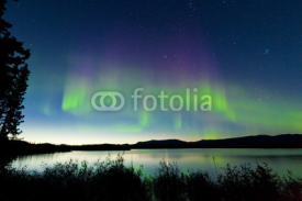 Fototapety Summer night Northern lights over Lake Laberge