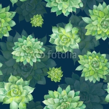 Fototapety Watercolor Succulent Pattern on Blue Background