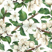 Fototapety Pattern with watercolor apple flowers