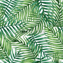 Fototapety Watercolor tropical palm leaves seamless pattern. Vector illustration.