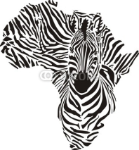 Fototapety Africa in a zebra  camouflage