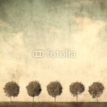 Fototapety grunge image of trees