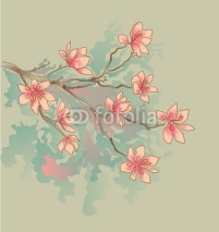 Fototapety magnolia watercolor