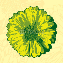 Fototapety Yellow flower in the abstract background