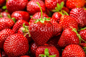 Fototapety Fresh Strawberry Background