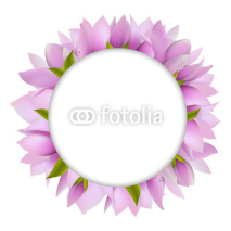 Fototapety Magnolia With Circle