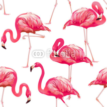 Fototapety Tropical Bird Flamingo Background - Seamless pattern vector