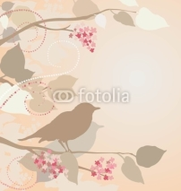 Fototapety Nightingales in lilac branches.