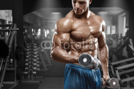 Obrazy i plakaty Muscular man working out in gym doing exercises with dumbbells at biceps, strong male naked torso abs