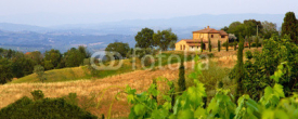 Fototapety Tuscan landscape panorama in evening sun