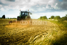 Obrazy i plakaty Tractor ploughs field