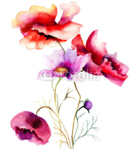 Fototapety Watercolor illustration with flowers