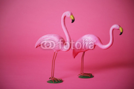 Obrazy i plakaty Pink flamingoes in studio