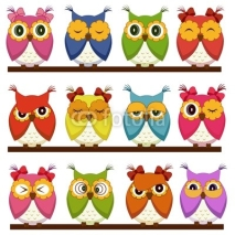 Naklejki Set of 12 owls with different emotions
