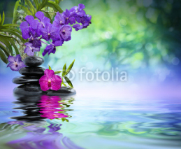Fototapety violet orchids, black stones on the water