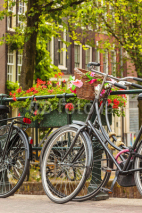 Obrazy i plakaty Summer view of bicycles in the Dutch city Amsterdam