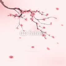 Naklejki oriental style painting, cherry blossom in spring