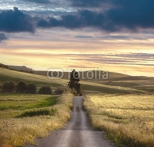 Naklejki Rural Road Sunset