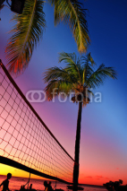 Naklejki Grid for beach volleyball between palm trees at a sunset