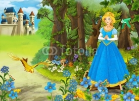 Obrazy i plakaty The princesses - castles - knights and fairies