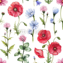 Fototapety Wild flowers illustrations. Watercolor seamless pattern