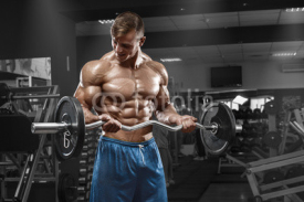Obrazy i plakaty Muscular man working out in gym doing exercises with barbell at biceps, strong male naked torso abs