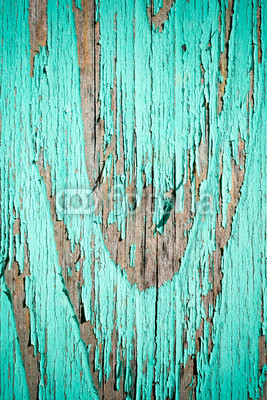 Green wooden background. Light color .
