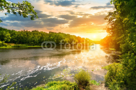 Fototapety Sunset over the river in the forest