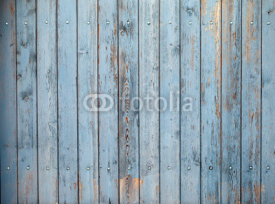 Obrazy i plakaty Wooden background Texture