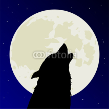 Fototapety Werewolf or wolf howls on full Moon