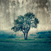 Fototapety A single tree represent loneliness and sadness