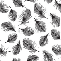 Fototapety Seamless pattern with hand-drawn feathers.